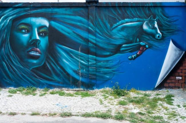 Muro azul (37)