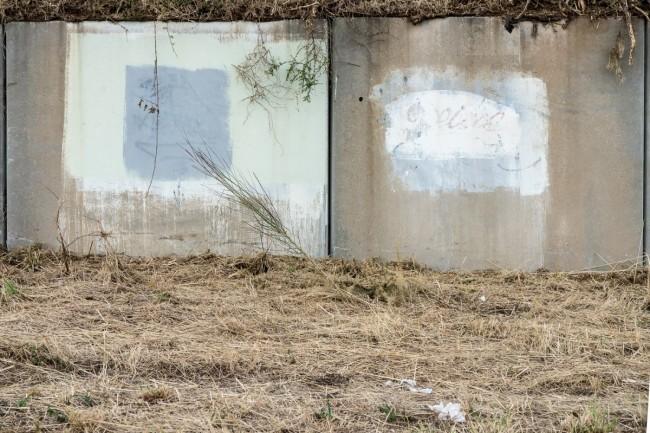 El silencio  de los muros (19)