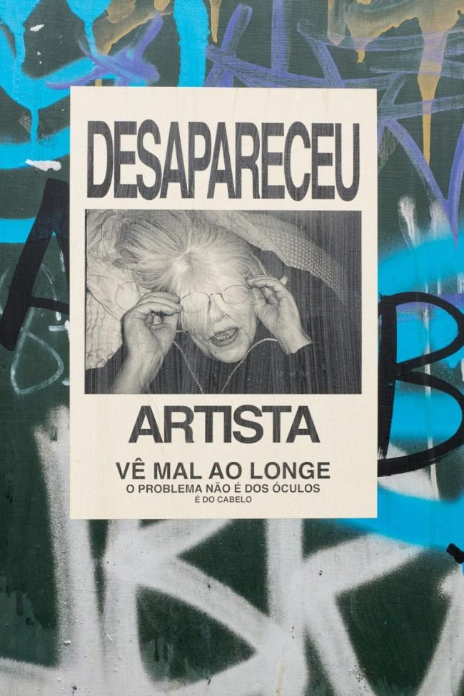 Desapareceu artista (13)