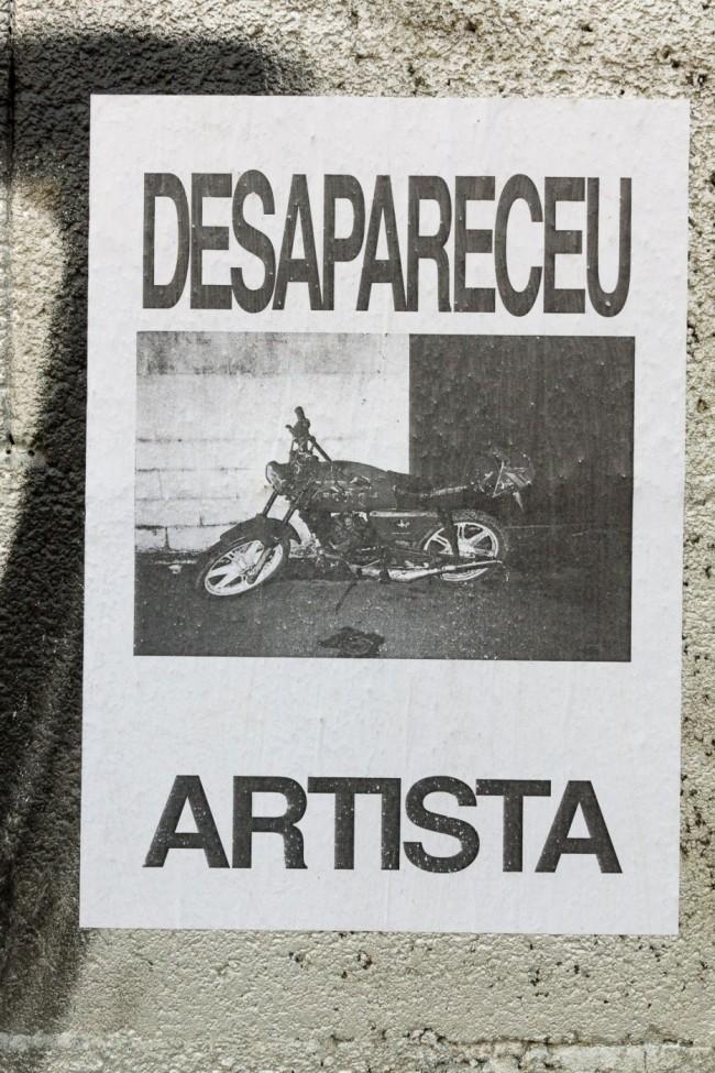 Desapareceu artista (20)