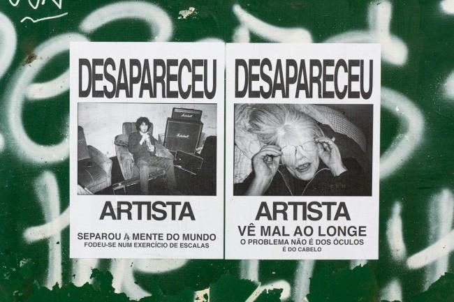 Desapareceu artista (22)