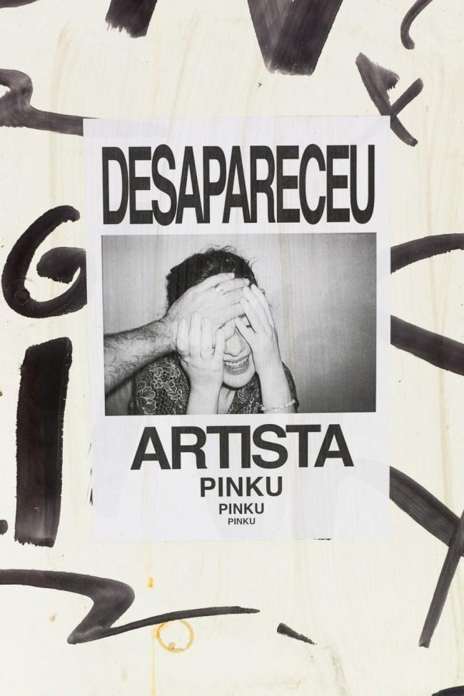 Desapareceu artista (25)
