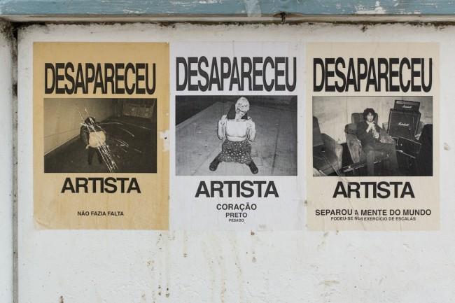 Desapareceu artista (9)