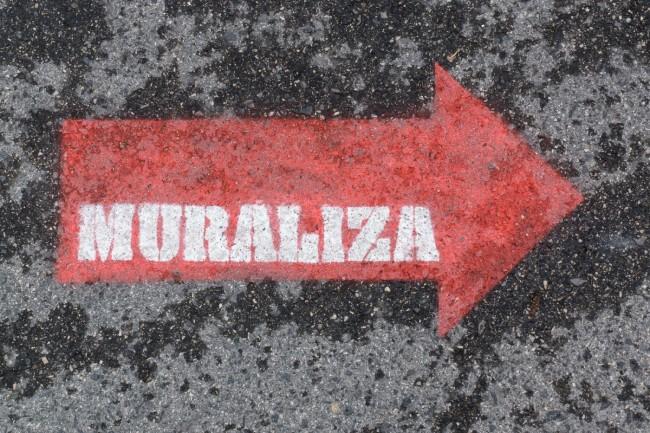 MURALIZA (25)