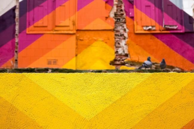 Palomas y paredes (20)