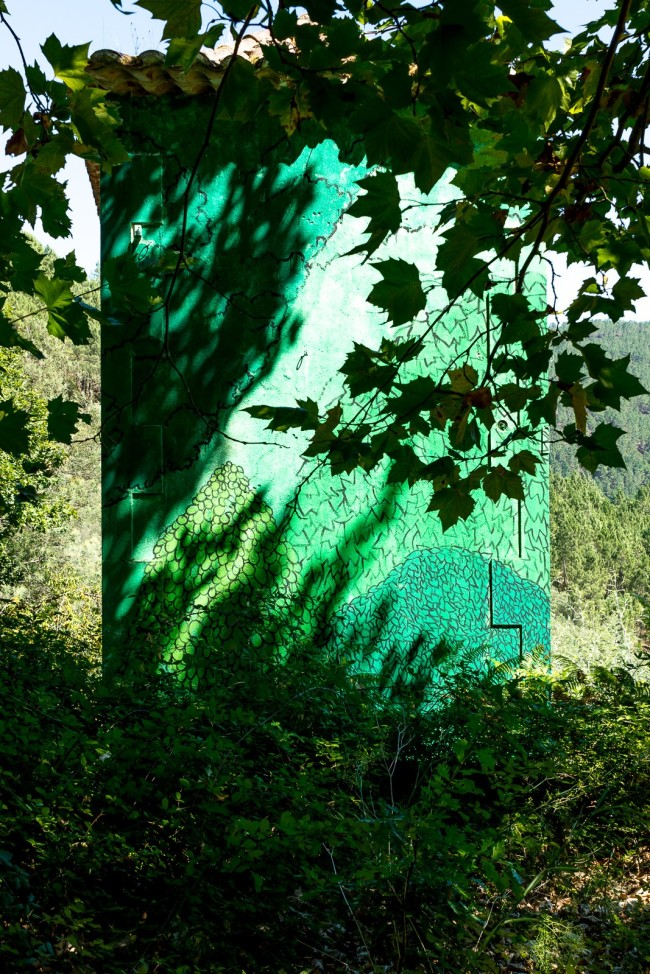 Reforestaciones (46)