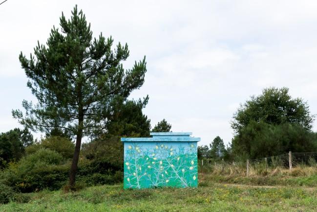 Reforestaciones (52)