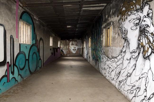 Visual Decay (16)