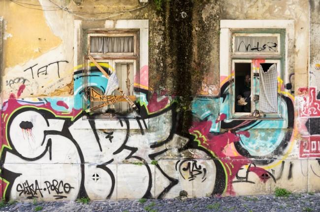 Vandalismo (14)