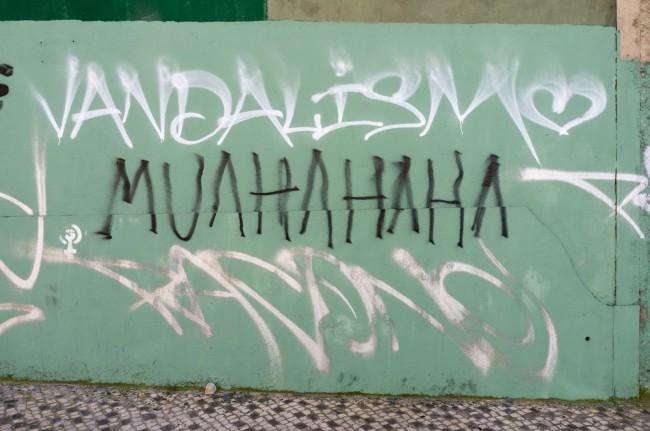 Vandalismo (22)